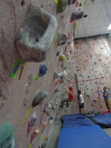 Indoor Wall