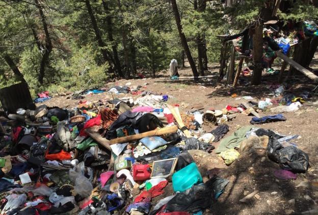 Jud Wiebe Trash Camp